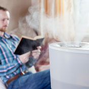 Whole-house humidifier