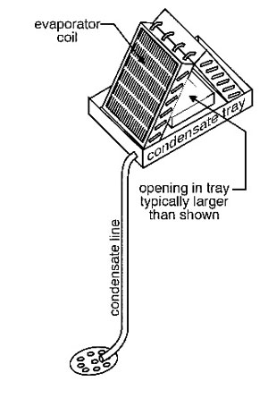 air conditioner drain diagram why is my central air conditioner leaking water  needham oil  central air conditioner leaking water